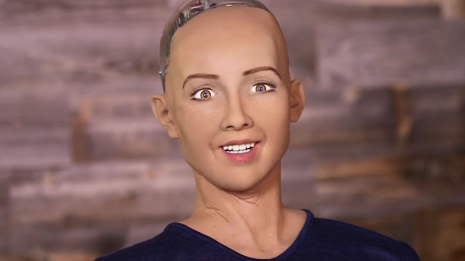 This robot has been granted a citizenship in Saudi Arabia